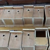 Bird_Boxes[1] (600 x 337).jpg