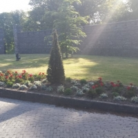 Flower Bed @ Drishane Castle.jpg