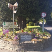 Flower Bed @ Macroom Road.jpg