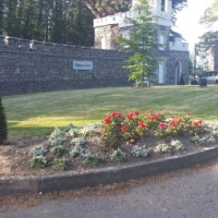 Flower Bed at Drishane Castle.jpg