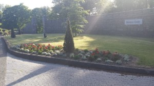 Flower bed @ drishane castle