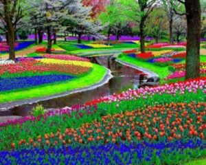 show-garden-600-x-479